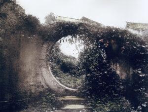 Bromoils Hidden Garden Ellie Young